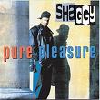 Pure Pleasure | Shaggy