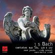 Bach Cantatas | René Jacobs