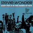Can't Put It In The Hands Of Fate   Stevie Wonder