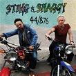 44/876 | Sting