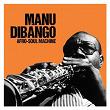 Afro-Soul Machine   Manu Di Bango