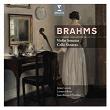Brahms: Cello & Violin Sonatas   Jaime Laredo