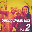 Spring Break Hits, Vol. 2 | Top 40