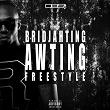 Awting Freestyle | Bridjahting