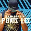 Punis les   Bridjahting
