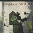 Surnatural Orchestra | Françoise Pelherbe