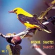 Oiseaux solistes, vol. 2 (Birds Solists) | Chiff-chaff