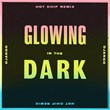 Glowing in the Dark   Django Django