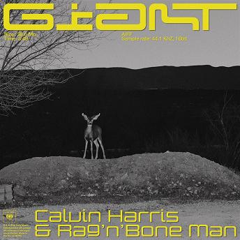Giant | Calvin Harris & Rag N Bone Man