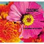 Album Essence de Lucinda Williams