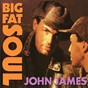 Album Big fat soul de John James
