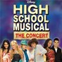 Compilation High school musical: the concert avec Vanessa Hudgens / Corbin Bleu / Drew Seeley / Ashley Tisdale