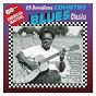 Compilation 15 country blues classics avec Mance Lipscomb / Mississippi Fred MC Dowell / Sam Lightnin' Hopkins / John Jackson / Melvin Lil Son Jackson...