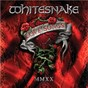 Album Now You're Gone de Whitesnake