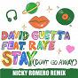 Album Stay (Don't Go Away) (feat. Raye) de David Guetta