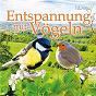 Compilation Entspannung mit Vögeln avec Leo Rojas / Tony Amante / Ricky King / Alpenchill