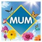 Compilation Mum: the collection avec George Benson / Bernard Edwards / Nile Rodgers / Sister Sledge / Nickolas Ashford...