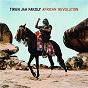 Album African revolution de Tiken Jah Fakoly