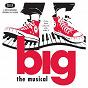 Compilation Big (1996 original broadway cast recording) avec Alex Sanchez / Patrick Levis / Barbara Walsh / Brett Tabisel / Lizzy Mack...