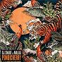 Album Pondicherry de DJ Snake / Malaa