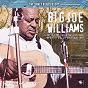 Album The sonet blues story de Big Joe Williams