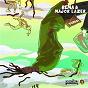 Album Dumebi (Major Lazer Remix) de Major Lazer / Rema
