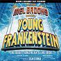 Album The new mel brooks musical - young frankenstein de Mel Brooks