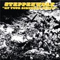 Album At your birthday party de Steppenwolf