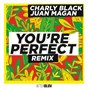 Album You're perfect (remix) de Juan Magán / Charly Black