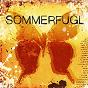 Album Sommerfugl de Tor Endresen