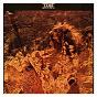 Album Bring out the sun de Lamb