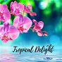 Album Tropical Delight de Zen Music Garden
