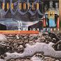 Album Poison years de Bob Mould