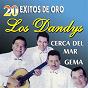 Album 20 éxitos de oro de Los Dandys