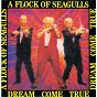 Album Dream come true de A Flock of Seagulls