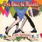 Compilation Les amis du musette, vol. 2 (20 artistes) avec Christelle Jeanblanc / Franck Vilain / André Loppe / Manu Maugain / Jean-Marc Torchy...