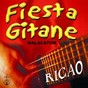 Album Fiesta gitane autour d'un feu, vol. 1 (malacatum) de Ricao