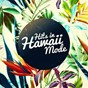 Album Hits in hawaii mode (classic hits in the style of hawaiian slide guitar) de Hawaii Slide Guitar Masters