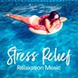 Compilation Stress relief relaxation music avec Music & Wellness / Zen & Relaxation / Oscar Rocchi / Philippe Roche / Davide Alivernini...