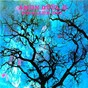 Album Phallus dei de Amon Düül 2