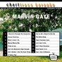 Album Artist series vol. 10 - sing the songs of marvin gaye de Charttraxx Karaoke