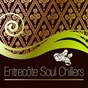 Compilation Entrecôte soul chillers avec Kaledj / Aimée Sol / Simon le Grec / 351 Lake Shore Drive / Aqualise...