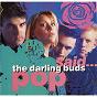 Album Pop said de The Darling Buds