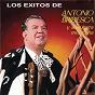 Album Los éxitos de antonio bribiesca y su guitarra mexicana de Antonio Bribiesca