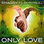 Album Only love de Shaggy