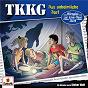 Album 213/das unheimliche dorf de TKKG