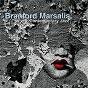 Album Contemporary jazz de Branford Marsalis