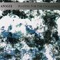 Album Waiting for the challenge de Apogée
