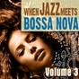 Compilation When jazz meets bossa nova, vol. 3 avec Plinio de Oliveira / The Bossa Jazz Quartett / Flavia Oliveira / Diana Miranda / David Costa...