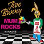 Album Jive bunny mum rocks - karaoke de Jive Bunny